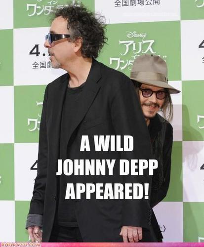 Johnny Depp Funnies