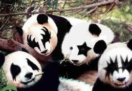 किस Panda's:)