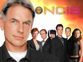 Season 5 Wallpaper - ncis wallpaper