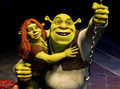Shrek Forever After  - shrek-forever-after fan art