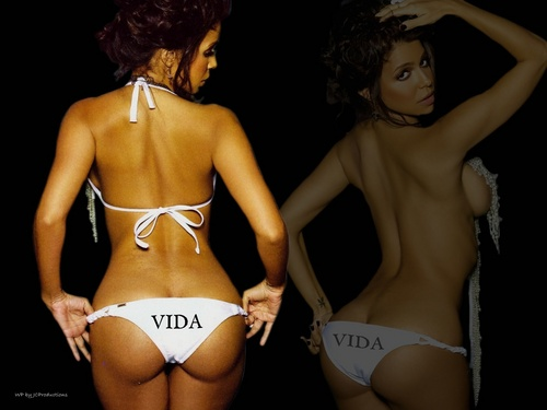 Vida Guerra wallpaper probably with a bikini titled Vida Guerra