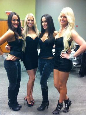 WWE Divas achtergrond probably with bare legs, hosiery, hot pants, and hotpants titled kelly kelly