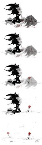.:Sonadow:. ~ <3