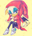 .:Sonknux:. - knuckles-and-rouge fan art