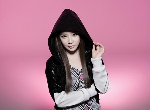 http://images4.fanpop.com/image/photos/21100000/2NE1-2ne1-21108580-500-367.jpg