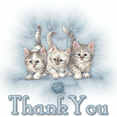 a big thank you
