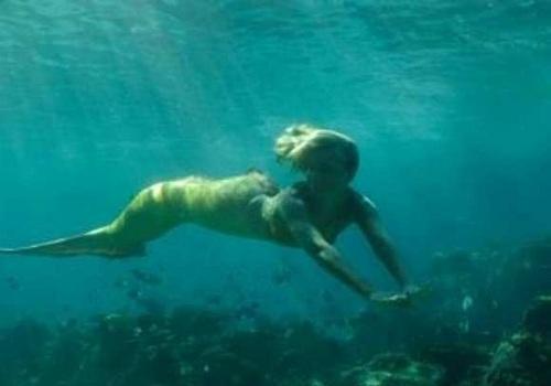 Bella swimming underwater