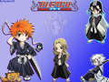 CHIBIS - bleach-anime photo