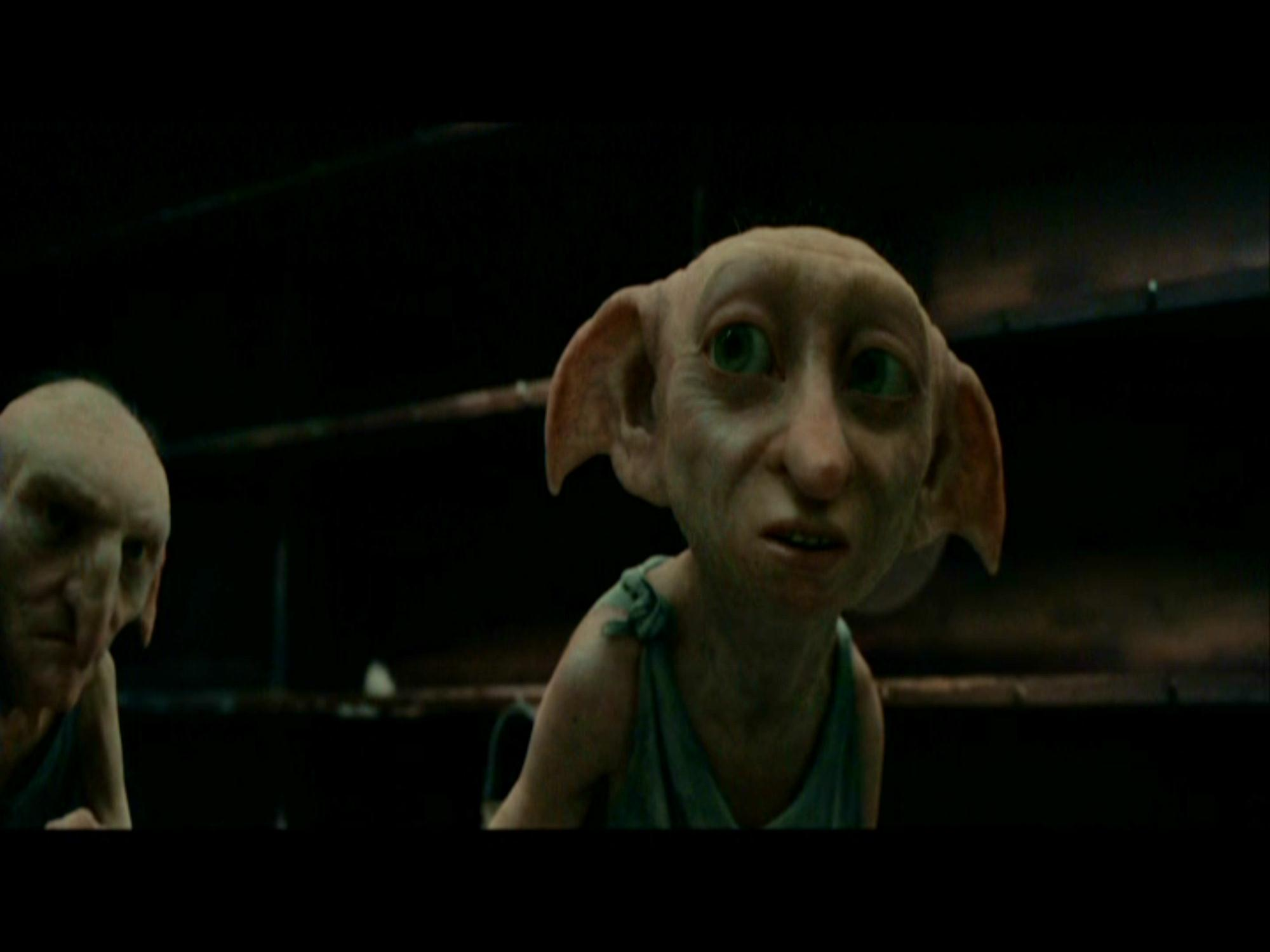 Dobby The House Elf Images Dobby In The Deathly Hallows HD Wallpaper And  Background Photos