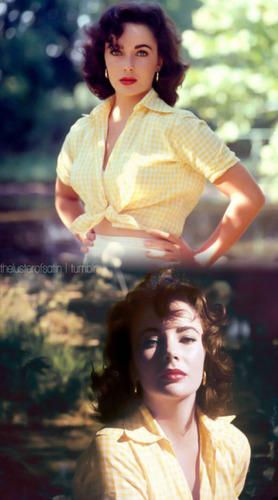 Elizabeth Taylor Blend