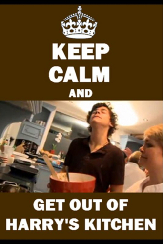 Flirt Harry (Ur Smile Lights Up My Heart) Keep Calm & Get Out Of Harry's Kitchen! 100% Real ♥