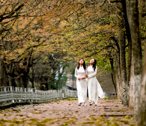 Hanoi autumn