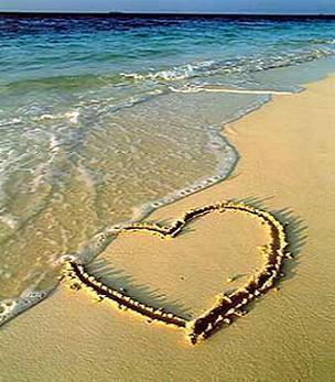 amor fotografias :)