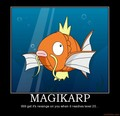 Magikarp - pokemon photo