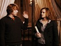 Ron&Hermione (DH) - ronald-weasley photo