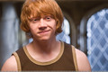 Ronald Weasley  - ronald-weasley photo