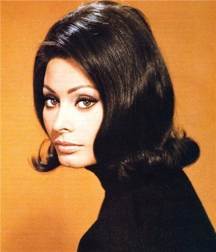 sophia loren wallpaper containing a portrait titled Sophia Loren