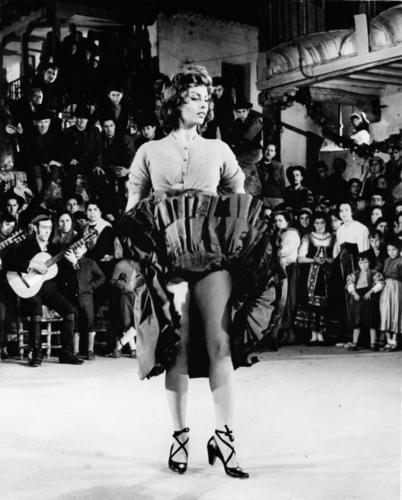 Sophia Loren wallpaper called Sophia Loren