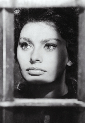 Sophia Loren wallpaper probably containing a holding cell and a penal institution entitled Sophia Loren