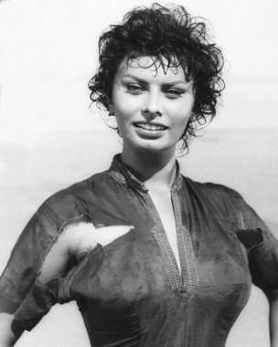 索菲亚·罗兰 壁纸 possibly containing a well dressed person titled Sophia Loren