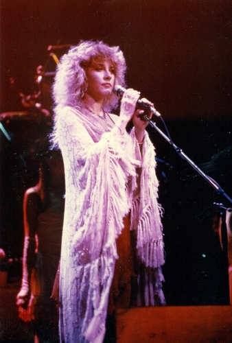 stevie nicks wallpaper titled Stevie