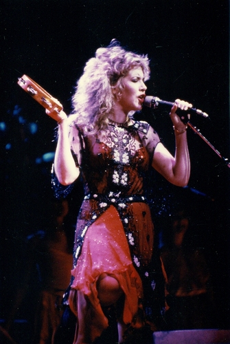 stevie nicks wallpaper with a show, concerto called Stevie
