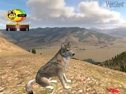 Games About Wolves
