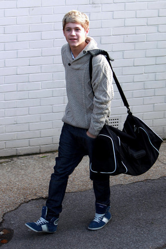 xxx niall james horan xxx