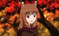 Autumn Wolf - spice-and-wolf screencap