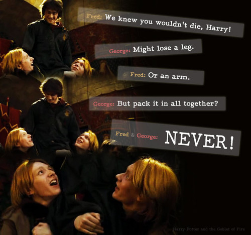 Fred and George Weasley wallpaper possibly with a bouquet entitled Fan Art