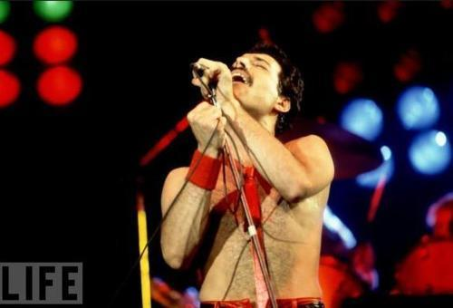 Freddie Mercury images Freddie Mercury wallpaper and background photos