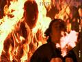 friday-the-13th - Freddy vs Jason wallpaper