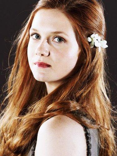 Ginny fan Art