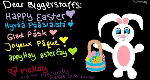 Happy Easter from Malloy♥
