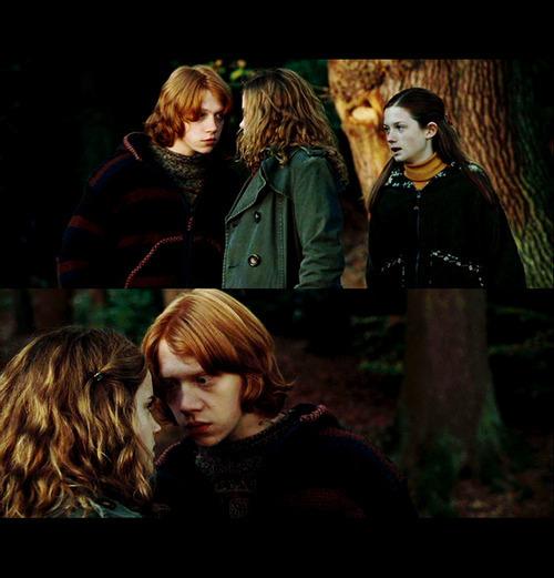 Hermione Granger - Hermione Granger Fan Art (21838308