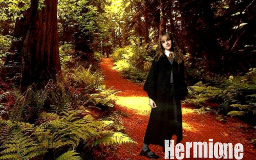 Hermione Granger- Rainbow - harry-potter Wallpaper