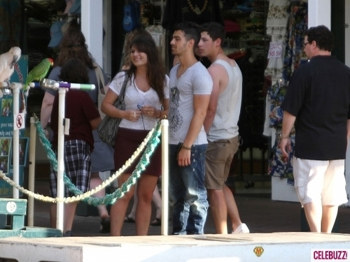 Nick & Joe Jonas Get Lei'd in Hawaii April 21 2011