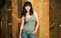 Pauley Perrette - ncis-vs-csi wallpaper