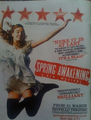 Spring Awakening - spring-awakening photo