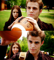 Stefan & Elena.. - stefan-salvatore-and-elena-gilbert fan art