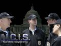 The NCIS - Unità anticrimine Team