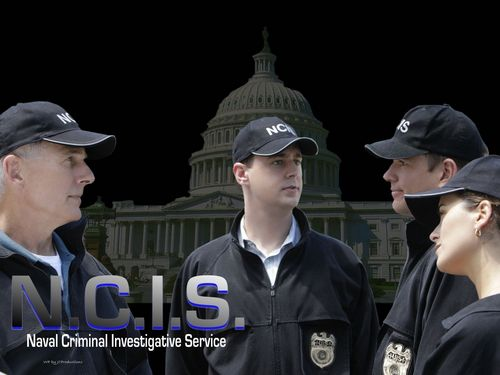 NCIS wallpaper entitled The NCIS Team