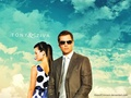 Tony and Ziva - ncis-vs-csi wallpaper