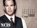 ncis Tony - ncis-vs-csi wallpaper