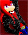 to cool for u - knuckles-the-echidna photo