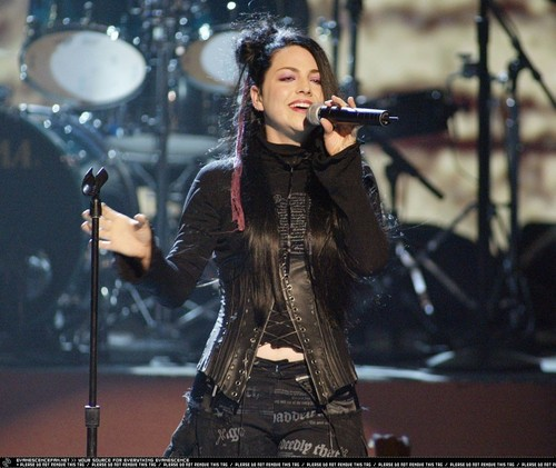 Amy Lee wallpaper with a concert and a guitarist called ♥Amy Lee♥