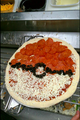 -Pokemon Pizza-