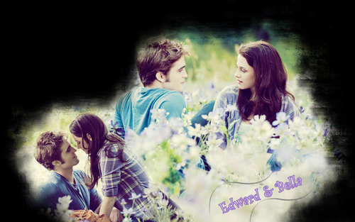 1280x800 - edward-and-bella Wallpaper
