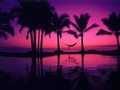 BEAUTIFUL SUNSET WALLPAPERS!!