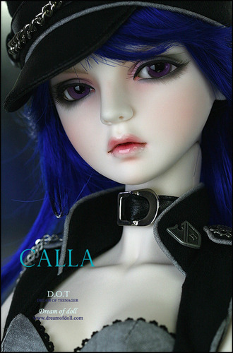 Ball-joint doll
